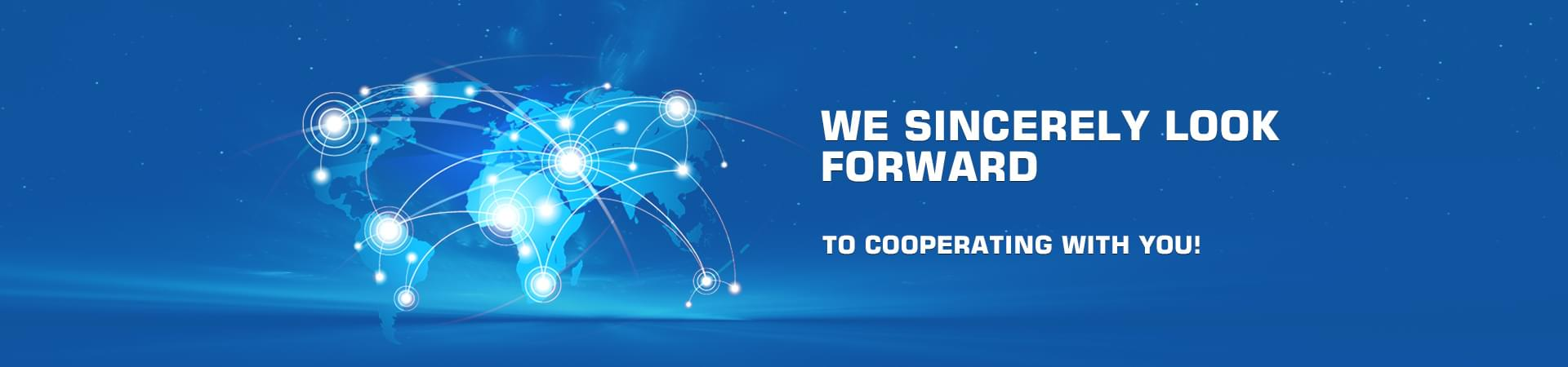 We sincerely look forward to cooperating with you